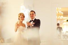 敬酒在他们的婚礼之日的新娘和新郎 库存图片
