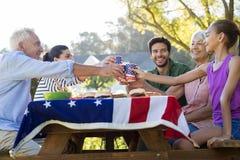 敬酒杯子的愉快的家庭,当有膳食在公园时 免版税库存图片