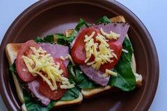 敬酒用烤肉、蕃茄、栗色和无盐干酪乳酪 库存照片