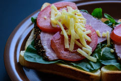 敬酒用烤肉、蕃茄、栗色和无盐干酪乳酪 免版税图库摄影