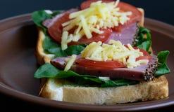 敬酒用烤肉、蕃茄、栗色和无盐干酪乳酪 免版税库存照片
