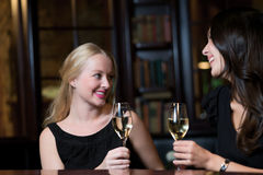 敬酒的两个美丽的妇女朋友 免版税库存图片