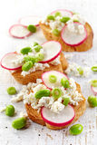 敬酒的面包用萝卜和酸奶干酪 库存照片