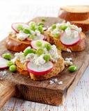 敬酒的面包用萝卜和酸奶干酪 免版税库存图片