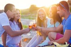 敬酒香槟汽酒的小组朋友在放松pa 免版税图库摄影