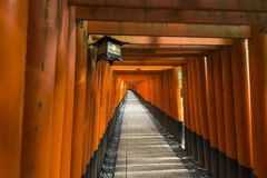 数千torii门, Fushimi Inari寺庙,京都,日本 库存图片