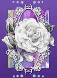 数字式卡片有玫瑰色和水彩背景 免版税库存图片