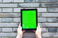 数字式片剂空白和绿色屏幕  库存图片