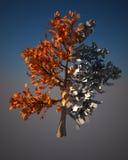 数字式结构树 向量例证