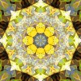 数字式绘画摘要五颜六色的花卉坛场背景 向量例证