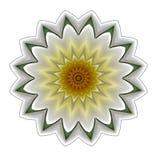 数字式艺术设计白色大丽花 皇族释放例证