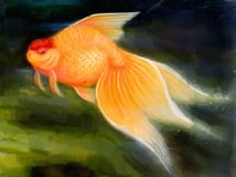 数字式鱼绘画 库存图片