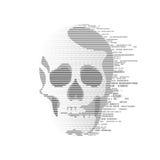 数字式头骨 库存照片