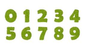 数字从绿草设置了,隔绝在白色 免版税库存照片