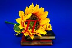 数字pi太阳花卉生长书日志笔记本黄金分割数学物理卷形象计数教学日行军蓝色 免版税图库摄影