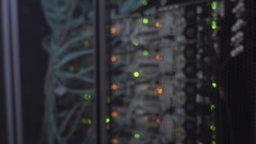 数据中心,服务器室在模糊的背景中 眨眼睛蓝色被带领的ligts 股票视频