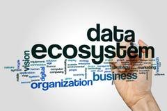 数据生态系词在灰色背景的云彩概念 免版税图库摄影