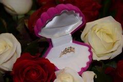 敲响与提议的金刚石结婚 免版税库存照片