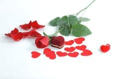 敲响在有一朵红色玫瑰的红色箱子在白色背景 免版税图库摄影