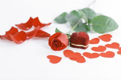 敲响在有一朵红色玫瑰的红色箱子在白色背景 免版税库存图片