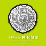 敲响结构树 免版税图库摄影