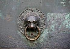 敲门人狮子头 库存照片