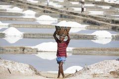 整理未认出的人的工作者,收集盐,在大盐调遣,体力劳动,有机农业,非常重活 库存照片