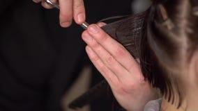 整理末端的美发师 影视素材