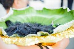 整理的被刮的头发 免版税图库摄影