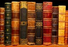 文化遗产 古老图书馆3 免版税库存图片