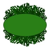 文本的卵形框架从异乎寻常,绿色monstera叶子 海报的,明信片,飞行物想法 留给热带 库存例证
