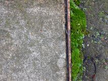 文本的垂直的地方-背景青苔和柏油路 库存照片