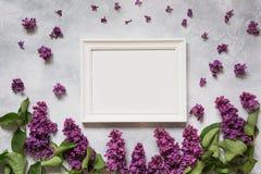 文本的白色框架与紫色丁香 顶视图 免版税库存照片