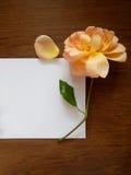 文本的英国玫瑰色和空插件在木头 图库摄影