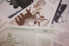 从文茨皮尔斯,拉脱维亚的金钱 免版税图库摄影