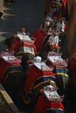 斋浦尔,印度, 2017年12月1日:运输游人的大象 免版税库存图片