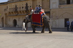 斋浦尔,印度-大象的游人在琥珀色的堡垒乘坐 免版税库存图片