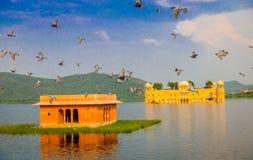斋浦尔,印度- 2017年9月20日:Jal玛哈尔人Sagar湖的水宫殿美丽的景色在斋浦尔,有一些的 免版税库存照片