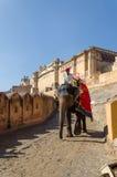 斋浦尔,印度- 2014年12月29日:在琥珀色的堡垒的装饰的大象在斋浦尔 免版税库存照片