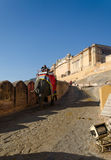 斋浦尔,印度- 2014年12月29日:在琥珀色的堡垒的装饰的大象 库存照片