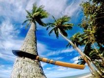 斐济大砍刀 库存图片