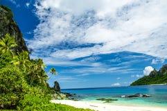 斐济旗子 免版税库存图片