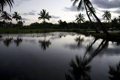 斐济日落 免版税库存照片