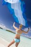 斐济海洋和平的南热带假期 库存图片