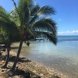 斐济 库存图片