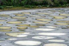 斑点湖在Okanagan谷的关闭视图 库存图片
