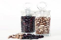 斑豆和红色扁豆 免版税库存照片