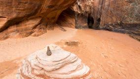 斑马和隧道槽孔峡谷在犹他 免版税库存照片