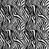 斑马无缝的五颜六色的动物皮毛纹理  免版税库存照片
