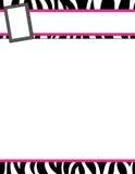 斑马条纹黑和桃红色框架 免版税库存照片